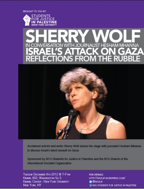 Sherry Wolf on Gaza